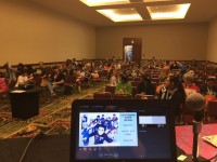 View from the stage before the panel. Kawaii Kon 2017