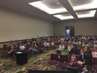 View from the stage during the panel, Kawaii Kon 2017